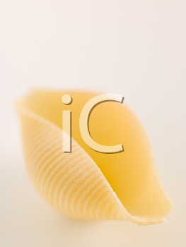 Royalty Free Photo of a Pasta Shell