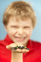 Royalty Free Photo of a Boy With a Plastic Spider