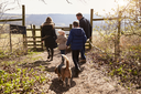 Family and dog walking to gate in the countryside, back view