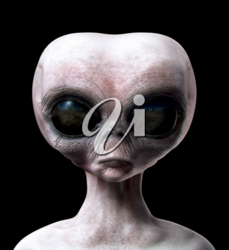 Grey alien portrait front view isolated on black