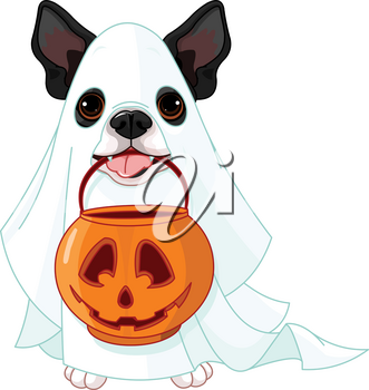 Halloween costumed dog holds pumpkin bag