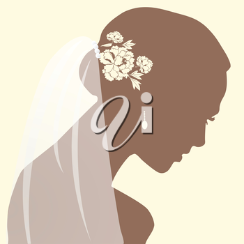 a beautiful woman portrait silhouette with bride veil