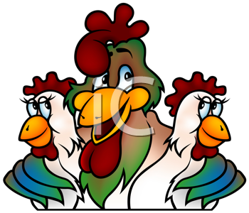 Royalty Free Clipart Image of a Rooster With Two Hens