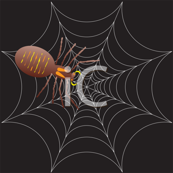 Royalty Free Clipart Image of a Spider