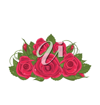 Illustration bouquet red roses isolated on white background - vector
