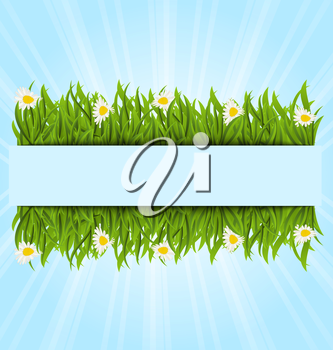 Illustration spring postcard with grass field and flowers chamomiles, copy space for your text - vector