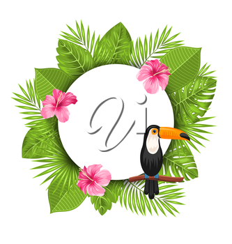 Illustration Clean Card with Pink Roses Mallow, Toucan Bird on Branch and Green Tropical Leaves - Vector