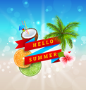 Summer Festival Poster Design with Coconut, Cocktail, Palm Tree Leaves, Slices of Orange and Lime. Banner Hello Summer - Illustration Vector
