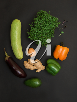 Fresh vegetables and micro greens sprouts on black background. Concept of superfood and healthy organic food