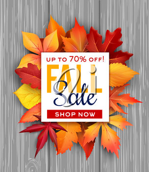 Autumn sale poster of fall foliage bunch on wooden background for seasonal shop discount promo. Vector design of maple, chestnut or poplar and oak leaf with sale 70 percent price offer sale design