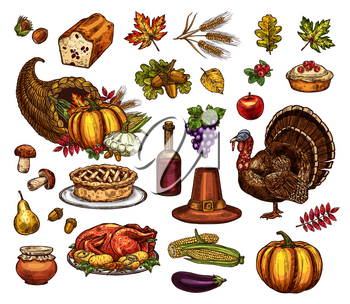 Thanksgiving symbols and holiday sketch icons. Vector isolated set of Turkey or roasted chicken and Thanksgiving pie, pumpkin and autumn harvest from cornucopia, maple or rowan leaf and pilgrim hat