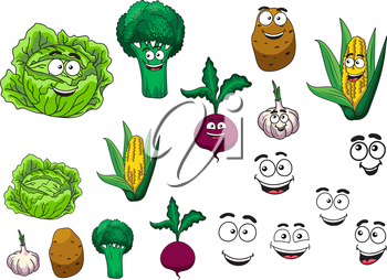 Fresh grocery vegetables set with a lettuce, broccoli, potato, garlic, beetroot and corn on the cob all with happy smiling cartoon faces