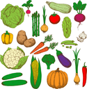 Farm fresh green cabbages and broccoli, peas and zucchini, sweet orange bell pepper and carrots, pumpkin and corn, spicy garlic, onions and cayenne pepper, crunchy cucumbers and cauliflower, asparagus