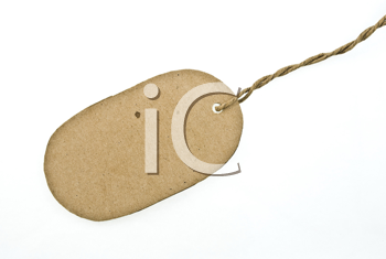 Royalty Free Photo of a Blank Cardboard Tag
