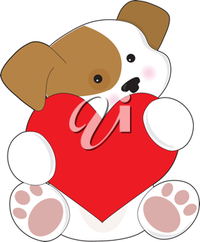 A cute brown and white puppy, is holding a red heart that is half as big as the puppy.