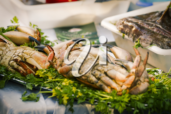 Fresh produce in seafood market.