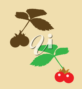 Royalty Free Clipart Image of Berries