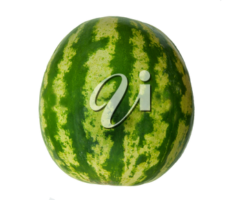 Ripe watermelon on white background is insulated