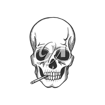 Skull smoking sketch for death danger symbol and tobacco addiction themes design. Head bone of human skeleton with cigarette for warning sign or tattoo design