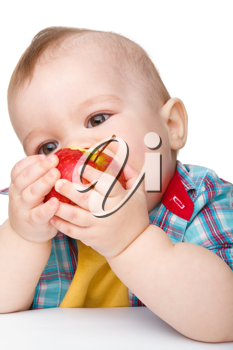 Royalty Free Photo of a Little Boy Eating an Apple
