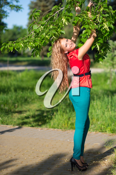 Young smiling blond woman touching branches of the tree