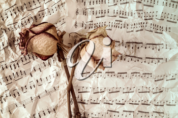 Dried roses on music sheets background