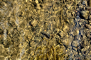 The texture of the large and small stones on the river bottom and the reflection on the water surface