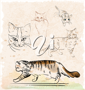 Royalty Free Clipart Image of Cats