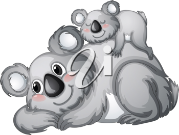 illustration of a koala bear on a white backgroundbackground