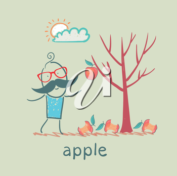 a man stands with a tree on which one apple