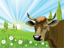 Royalty Free Clipart Image of a Cow in a Field