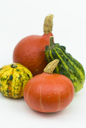 Royalty Free Photo of a Variety of Gourds