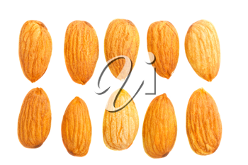 Royalty Free Photo of a Couple Rows of Natural Almonds