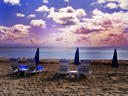 Royalty Free Photo of Deckchairs and Umbrellas on a Beach At Sunset