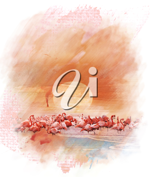 Watercolor Digital Painting Of  Flamingos At Sunset