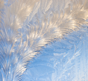 Royalty Free Photo of a Frost on a Window
