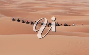 Royalty Free Photo of a Caravan in the Desert