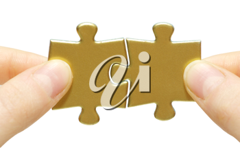 Royalty Free Photo of a Person Holding Puzzle Pieces