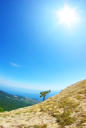 Royalty Free Photo of the Crimean Mountains