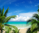 Royalty Free Photo of a Tropical Beach