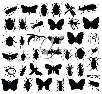 Silhouettes of insects of black colour. A vector illustration