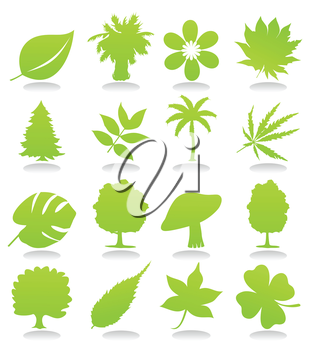Icons of plants of green colour. A vector illustration