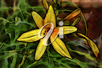 Royalty Free Photo of a Painting of a Lily