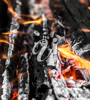 coals as background