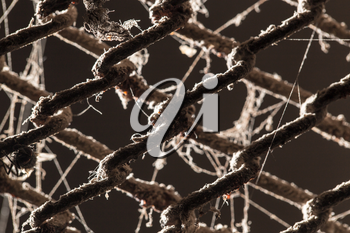 abstract background of old metal fence