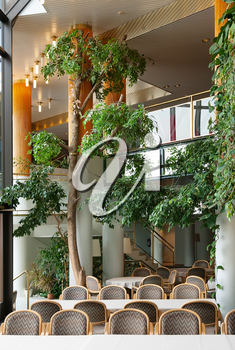 Foyer of a luxury hotel with pillars and greenery