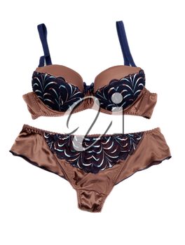 Brown Set of lingerie, isolate on a white background