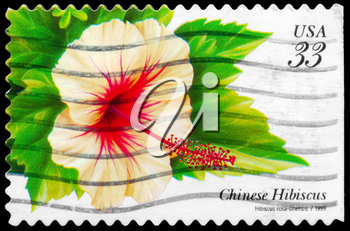 Royalty Free Photo of 1999 US Stamp Shows the Chinese Hibiscus (Hibiscus Rosa-Sinensis), Tropical Flowers