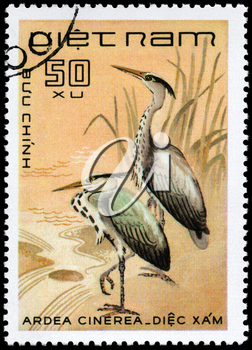 VIETNAM - CIRCA 1983: A Stamp shows image of a Grey Heron with the inscription Ardea cinerea from the series Water Birds, circa 1983