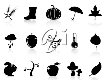isolated autumn icons set from white background